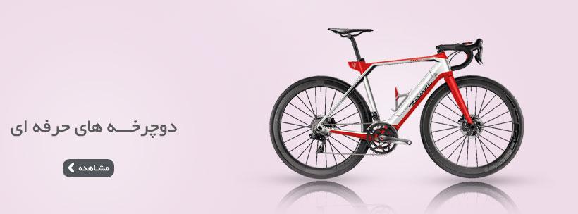 دوچرخه حرفه ای دنرو