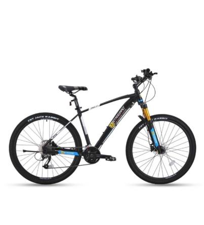 دوچرخه کوهستان ژاپنی wstandard
